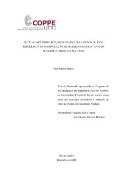 Vitor Santos Ramos - Programa de Engenharia Nuclear da COPPE