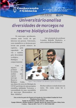 Revista Vol 02
