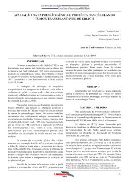 avaliação da expressão gênica e protéica das células do