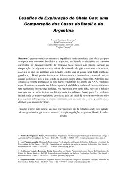 Uma Comparação dos Casos do Brasil e da Argentina