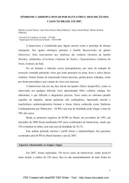 descrição dos casos no Brasil em 2007