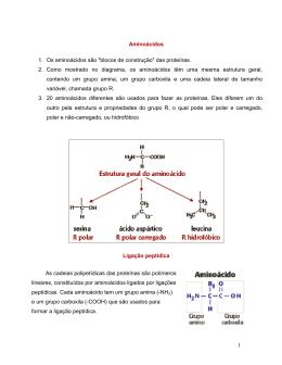 1 Aminoácidos 1. Os aminoácidos são