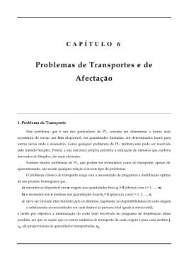 CAPÍTULO 6 Problemas de Transportes e de Afectação