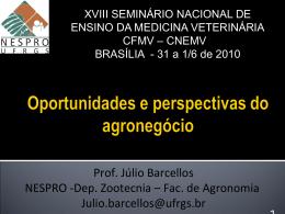 Oportunidades e perspectivas do agronegócio