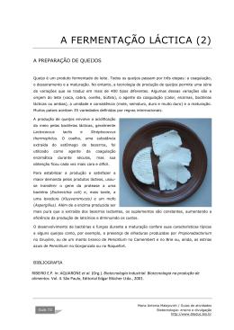 preparação de queijos PDF - BioTecnologia