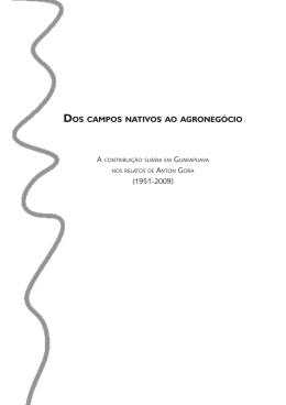 dos campos nativos ao agronegócio