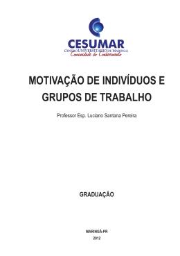 MOTIVAÇÃO DE INDIVÍDUOS E GRUPOS DE TRABALHO