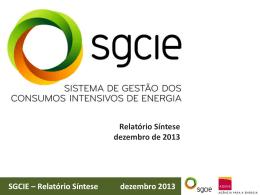 SGCIE – Relatório Síntese dezembro 2013