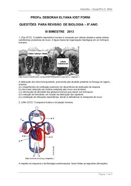 8º.ANO III BIMESTRE 2013