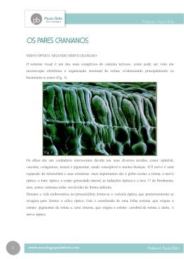 10 - Clínica Paulo Brito