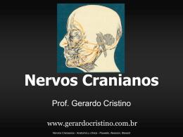 Nervos Cranianos - Dr. Gerardo Cristino