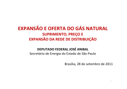 EXPANSÃO E OFERTA DO GÁS NATURAL