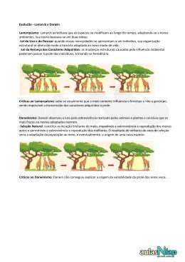 Evolução - Lamarck x Darwin