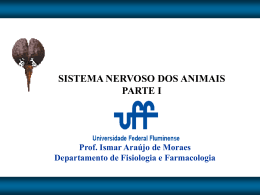 SISTEMA NERVOSO DOS ANIMAIS PARTE I