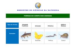 FORMAS DO CORPO DOS ANIMAIS
