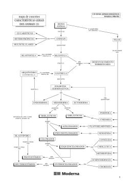 mapa de conceitos CARACTERÍSTICAS GERAIS DOS ANIMAIS (I)