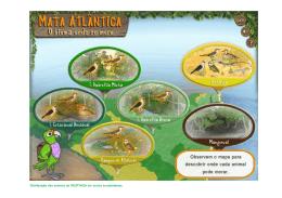 Mapa dos animais