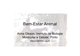 Bem-Estar Animal