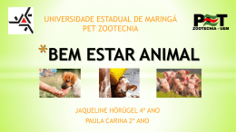 BEM ESTAR ANIMAL