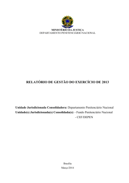 relatório de gestão do exercício de 2013