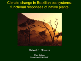 Climate change in Brazilian ecosystems: functional