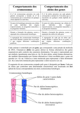 Comportamento dos cromossomas Comportamento dos alelos dos