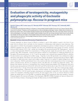 Evaluation of teratogenicity, mutagenicity and phagocytic activity of