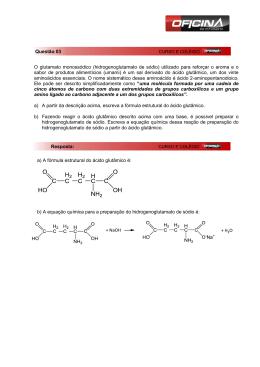 O glutamato monossódico (hidrogenoglutamato de sódio