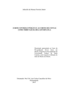 Adircélio de Moraes Ferreira Júnior O BOM CONTROLE