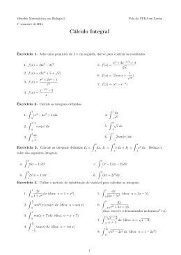 Cálculo Integral - Instituto de Matemática