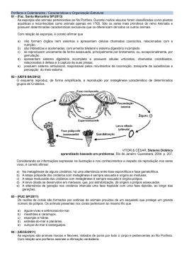 Poríferos e Celenterados / Características e Organização Estrutural