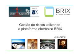 Contribuições da BRIX na Gestão de Riscos