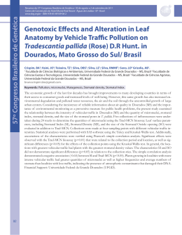 Genotoxic Effects and Alteration in Leaf Anatomy by Vehicle Tra c