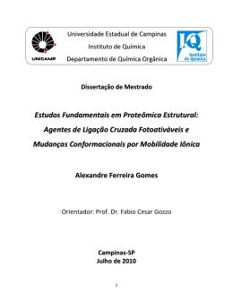 Estudos Fundamentais em Proteômica Estrutural