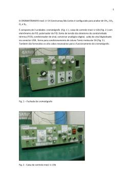 Manual Cromatógrafo modelo compacto U-13