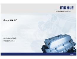 MAHLE, Componentes de Motores, SA - Seeds 3