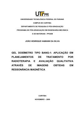 SILVA, Joao Henrique Hamann da