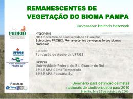 REMANESCENTES DE VEGETAÇÃO DO BIOMA PAMPA