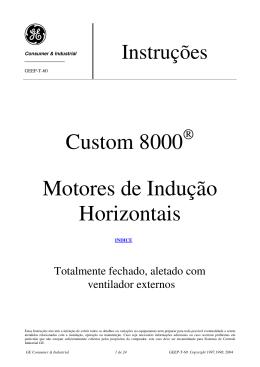 Custom 8000 Motores de Indução Horizontais
