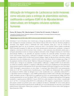 Utilização de linhagens de Lactococcus lactis invasivas como