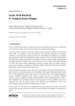 Lactic Acid Bacteria in Tropical Grass Silages