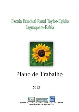 Plano de Trabalho ERTE 2013