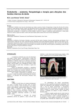 Endodontia – anatomia, fisiopatologia e terapia para afecções dos