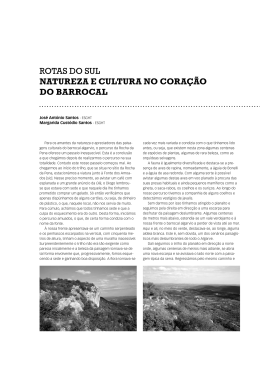 ROTAS DO SUL NATUREZA E CULTURA NO