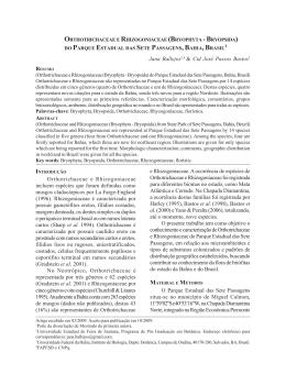 Orthotrichaceae e Rhizogoniaceae