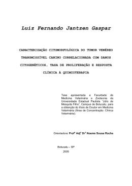 Luiz Fernando Jantzen Gaspar