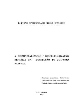 Tese Luciana - teste de formatação