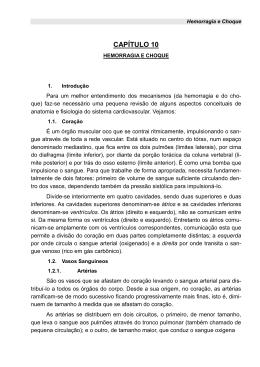 Hemorragia e Choque - Corpo de Bombeiros do Paraná