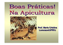 Prof. Maria Cristina Lorenzon/UFRRJ Prof. Maria Cristina Lorenzon