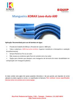 Mangueira LAVA-AUTO 600